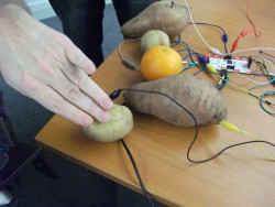 Vegetables turned into musical instruments using wiring and technology
